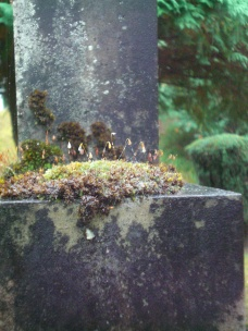 One of the grave stones at Tomnahurich Hill (a Faeirie Garden?)