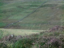 Drystane Dykes, near Kirkmichael, Perthshire