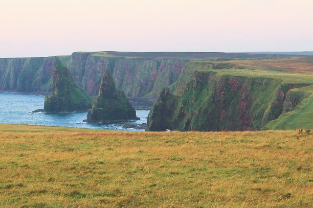 Stacks of Duncansby with Thirle Door just visible at the center of the photo just at sunrise