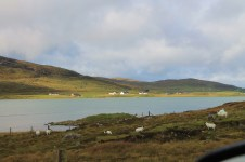 2 driving on South Harris (15)